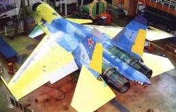Su-27kub 24